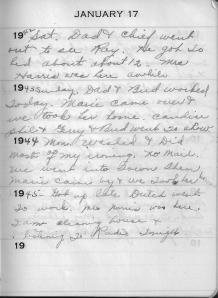 Diary Jan 17